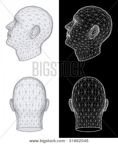 Set of two wireframe views of a human head at different angles on white and black background. Rasterized version