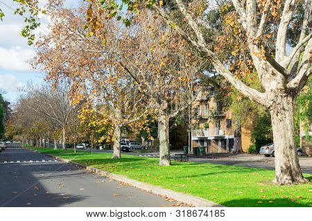 Melbourne, Australia - June 9, 2019: Oshanassy Street Is A Wide Tree Lined Residential Street In Nor