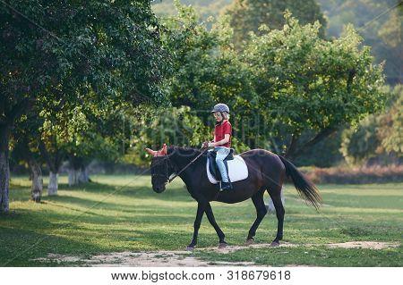 Cute Young Rider On Horseback Enjoying Horse Riding At Summer Garden