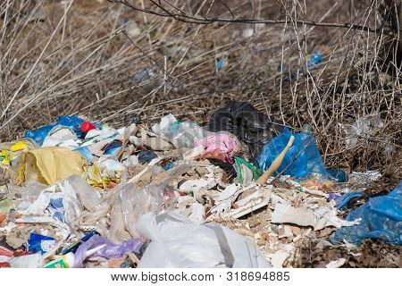 Trash On The Agriculture Field. Ecology Problem And Big Harm To Nature.