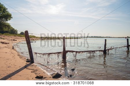 Backlit Image Of A Fence With Barbed Wire Into The Dutch River Waal. At The Wire Hanging Plant Resid