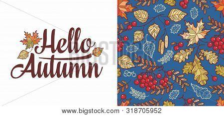 Hello Autumn Lettering Phrase Text. Autumn Leaves Seamless Pattern With Rowan, Maple, Birch And Oak.