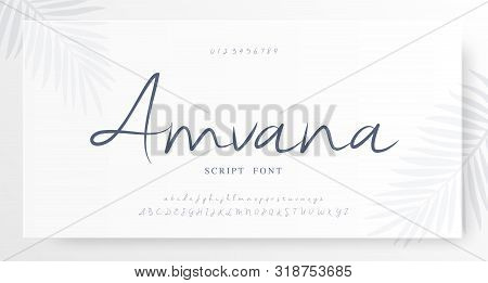 Elegant Script Alphabet Letters Font And Number. Classic Lettering Minimal Fashion Wedding Designs.
