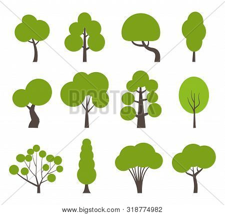 Big Set Of Various Trees. Tree Icons Set In A Modern Flat Style. Pine, Spruce, Oak, Birch, Trunk, As