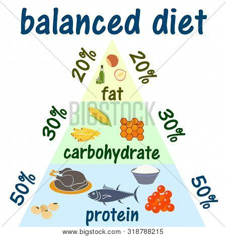 Ketogenic Diet Food Pyramid Infographic For Healthy Eating Diagram, Low Carbs, High Healthy Fat, Lon