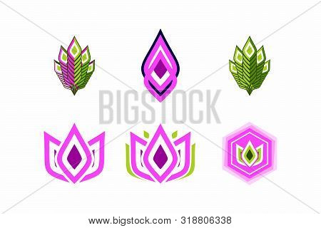 A Set Of Abstract Elements For The Logo. Character Set With Floral Motives