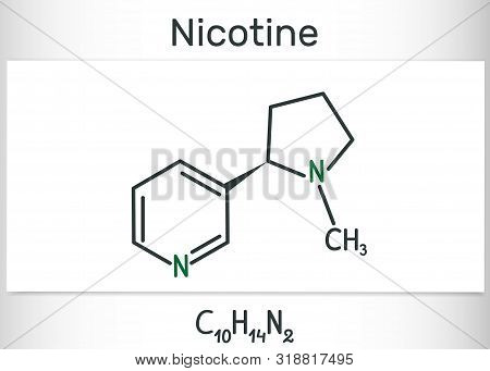 Nicotine Molecule, Is Alkaloid , Found In The Nightshade Family Of Plants. Structural Chemical Formu