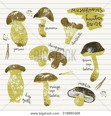 Edible Mushrooms Guide Poster. Linocut Old Style. Hand Drawn Vector Illustration.