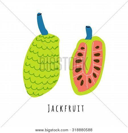 Jackfruit Fruit Flat Vector Illustration. Cartoon Slices Of Exotic, Tropical Fresh Fruit. Clipart Wi