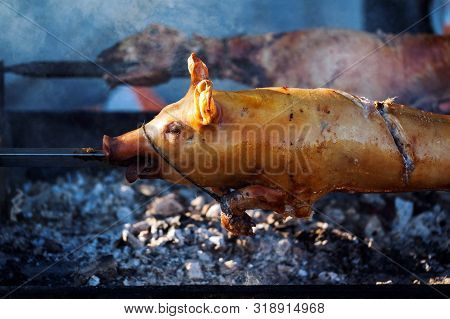 Details Of A Roasted Pig, Traditional Way Of Preparing Meat In Serbia.