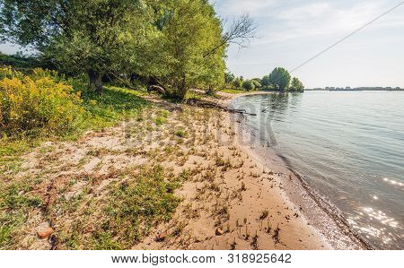 Sandy Beach With Grasses And Other Wild Plants On The Banks Of The Dutch River Waal Near The Village