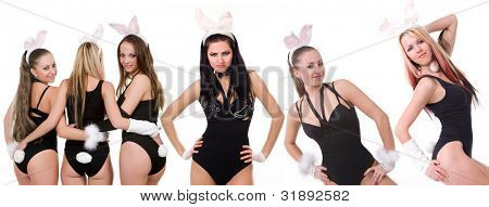 Collage of Sexy playgirls in bunny costumes isolated on white