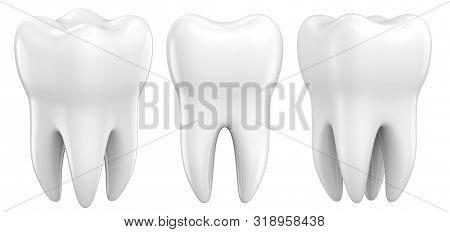 Set Of Dental Premolar Teeth 3d Models As A Concept Of Dental Examination Teeth, Dental Health And H