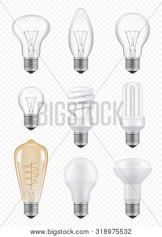 Light Bulbs. Transparent Halogen Economical Innovation Bulbs Vector Realistic Pictures. Light Bulb,