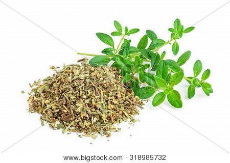 Green Thyme With Dried Thyme Leaves Isolated On White Background Close Up