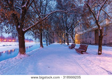 Uzhgorod Town At Dawn In Winter. Benches Under The Trees On Snow Covered Linden Alley, The Longest I