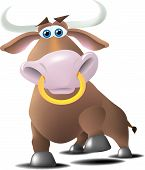 A bull with a ring in his nose in a charging or a proud pose. poster