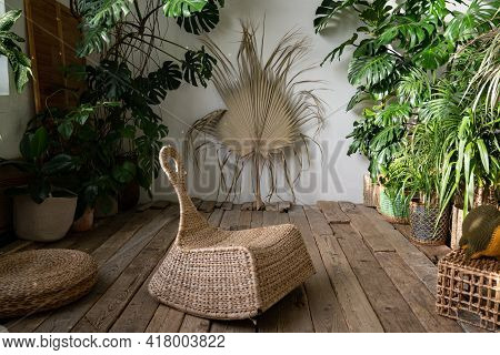 Cozy Indoor Garden With Wicker Furniture, Houseplants In Basket Flowerpots, Old Wooden Floor. Boho S