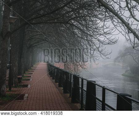Beautiful View Of The River Rhein In Strasbourg Park