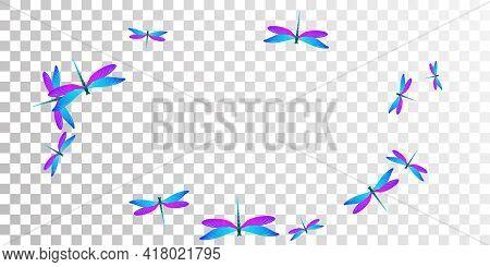 Magic Blue Purple Dragonfly Flat Vector Background. Spring Ornate Damselflies. Simple Dragonfly Flat