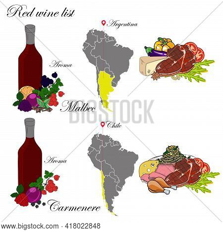 Malbec And Carmenere. The Wine List. An Illustration Of A Red Wine With An Example Of Aromas, A Vine