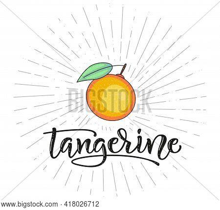 Tangerine. Fruit Symbol For Farm Market Menu. Healthy Food Design. Vector Stock Illustration