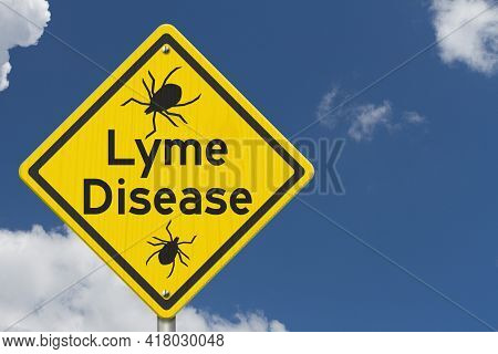 Lyme Disease Warning On A On Yellow Highway Caution Road Sign On Blue Clear Sky 3d Illustration