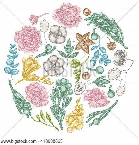 Round Floral Design With Pastel Ficus, Eucalyptus, Peony, Cotton, Freesia, Brunia Stock Illustration