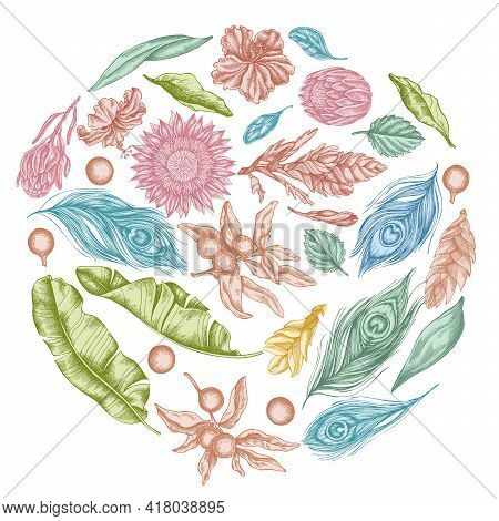 Round Floral Design With Pastel Banana Palm Leaves, Hibiscus, Solanum, Bromeliad, Peacock Feathers,