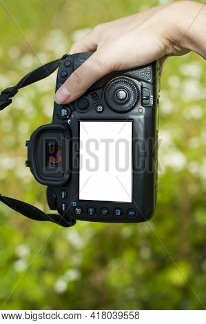 Hand Holds The Camera. Female Hands With A Camera, Holds To Photograph, Green Background. Close-up,