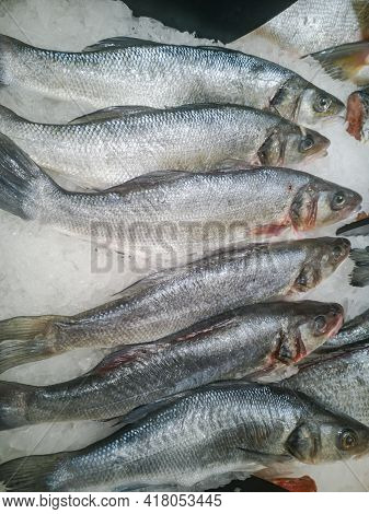 Delicious Big Fish For Food Frozen Sold In The Hypermarket Among The Ice.