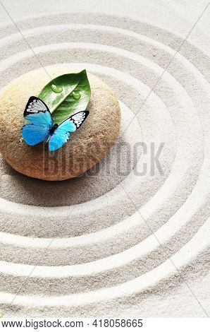 Sand, Circles And Stone. Green Leaf And Butterfly. Spa Concept.