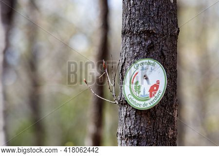 Ottawa, Ontario, Canada - April 22, 2021: A Bilingual Greenbelt Trail Marker Sign Is Screwed Into A