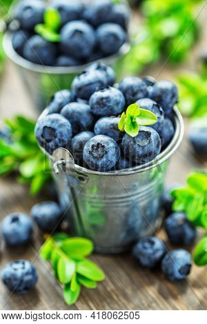 Fresh Blueberries Background With Copy Space For Your Text. Blueberry Antioxidant Organic Superfood