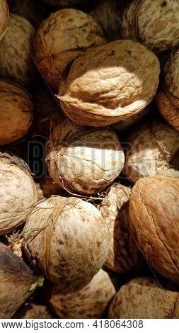 Bunch Of Ripe Walnuts In Sunlight. Fresh Walnut Shells Closeup. Natural Brown Nutshell Texture. Roug