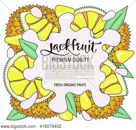 Vector Background With Jackfruit, Whole And Pieces. Illustration Isolated On White Background, Card