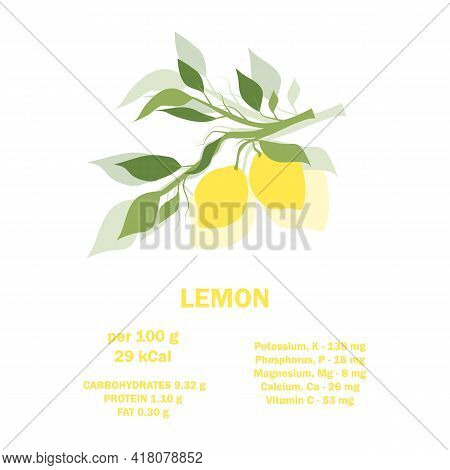 Infographic Card About Calories Of Lemon 100g. Vitamins, Minerals And Calorie Content. Flat Healthy