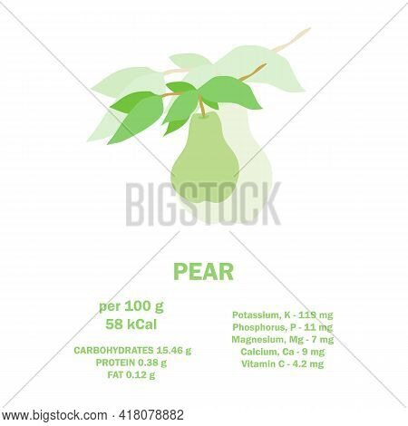 Infographic Card About Calories Of Pear 100g. Vitamins, Minerals And Calorie Content. Vector Flat He
