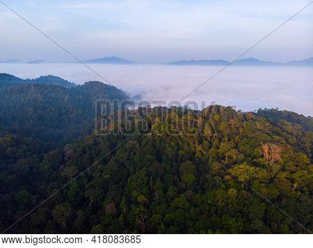 Aerial Shot Landscape Forest With Fog Bank .sea Of Mist With Mountain Morning Time. Tropical Rain Fo