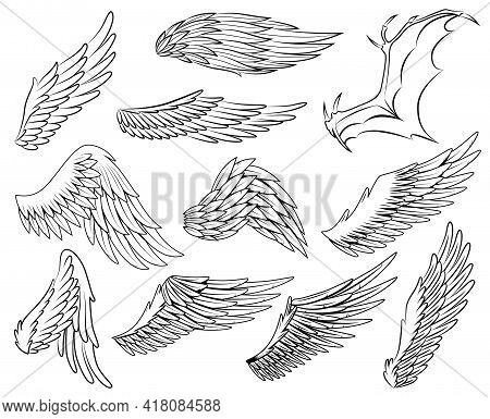 Collection Of Vintage Heraldic Wings Sketch. Monochrome Stylized Birds Wings. Hand Drawn Contoured S