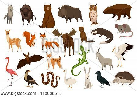 Animals Of Europe. Nature Fauna Collection. Geographical Local Fauna. Mammals Living On Continent. V