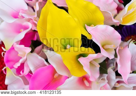 Bright And Colorful Floral Background, Spring, Summer. Multicolored Flowers, Background, Texture