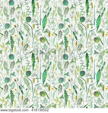 Seamless Pattern With Meadow Wild Flowers, Herbs, Grasses. Watercolor Hand Drawn Botanical Illustrat