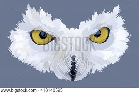 Polar Owl Mask Isolated On Gray Background. The Yellow Large Round Eyes And Beak Are Framed With Fea