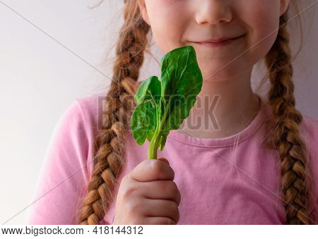 Little Girl With Fresh Spinach In Hand White Background. Child Eats Natural Food Leaf Vegetable Vita