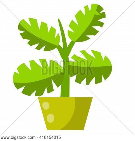 Home Plant In Pot. Large Green Leaves.element Of Decoration And Gardening. Hobbies And Flora. Cartoo