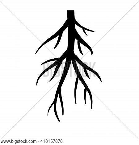 Root. Underground Part Of Plant. Black Icon.