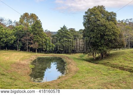 Farm Field With Lake And Trees, Ivoti, Rio Grade Do Sul, Brazil