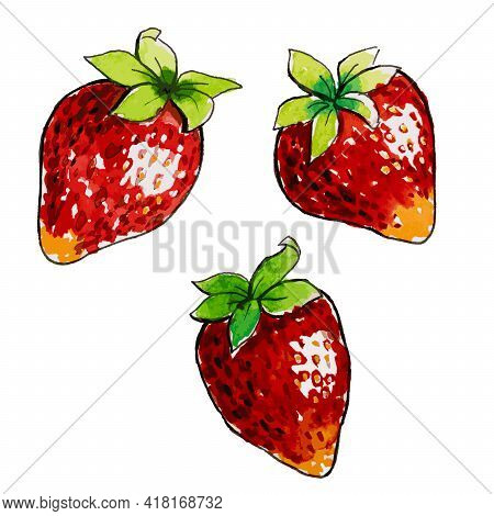 Watercolor Strawberry With Leafs Closeup Isolated On White Background