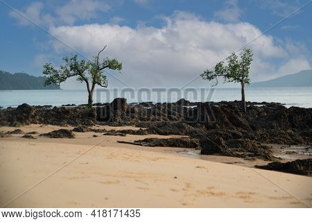 Rocky Beach With A View Of Rock And Sea. Rocky Cliffs And Sea Waves On Sandy Beach